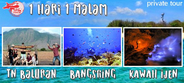 Paket Wisata Banyuwangi 1 Hari (Bangsring Underwater – Taman Nasional Baluran – Wisata Ijen)
