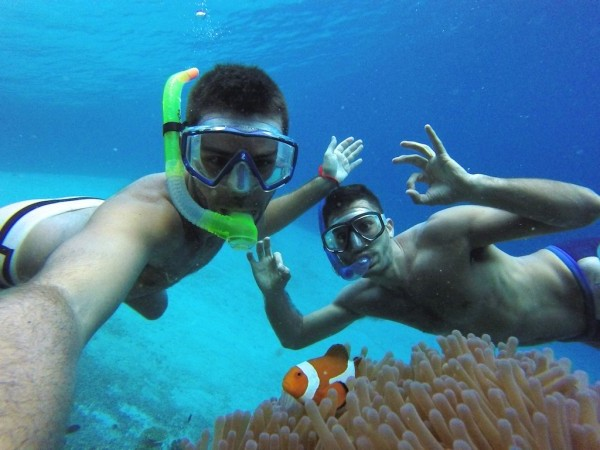 open trip banyuwangi, open trip menjangan tabuhan, wisata menjangan banyuwangi
