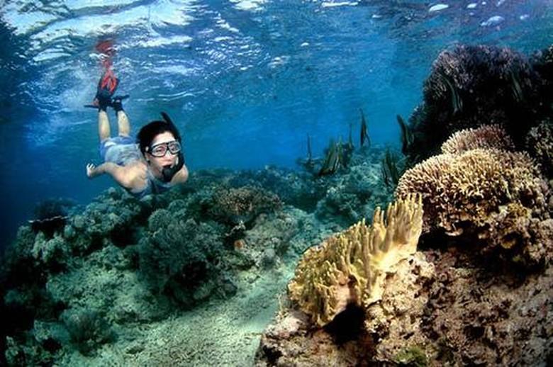 wisata pulau tabuhan, tour banyuwangi, banyuwangi travel