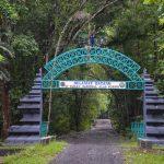 Keunikan Taman Nasional Alas Purwo