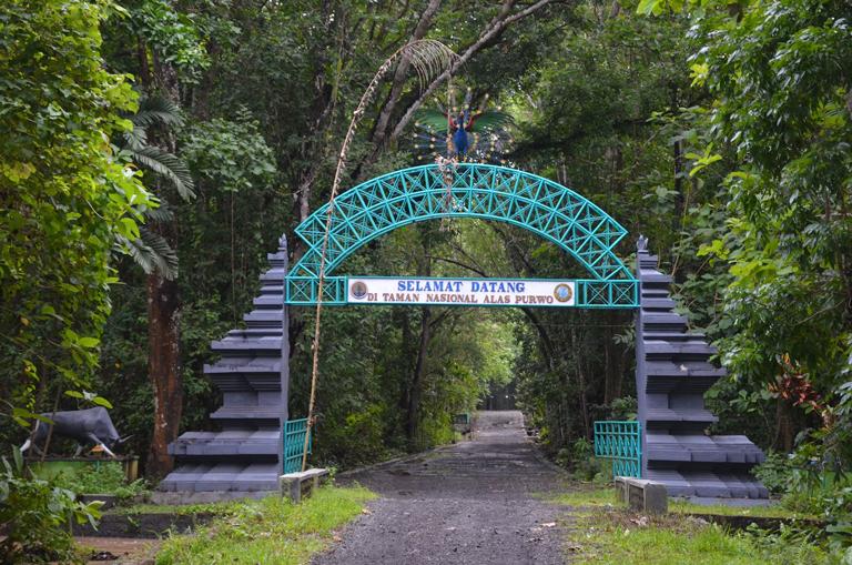 Keunikan Taman Nasional Alas Purwo - paket wisata banyuwangi, paket tour  banyuwangi