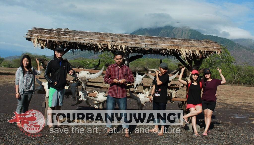 paket gathering perusahaan, objek wisata banyuwangi, wisata taman nasional baluran