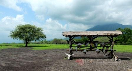 Open Trip Banyuwangi 3 Days 2 Nights, Destinasi wisata Banyuwangi, wisata Taman Nasional Baluran