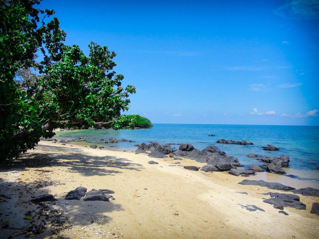 pantai bama jawa timur, pantai bama baluran, deskripsi pantai bama baluran