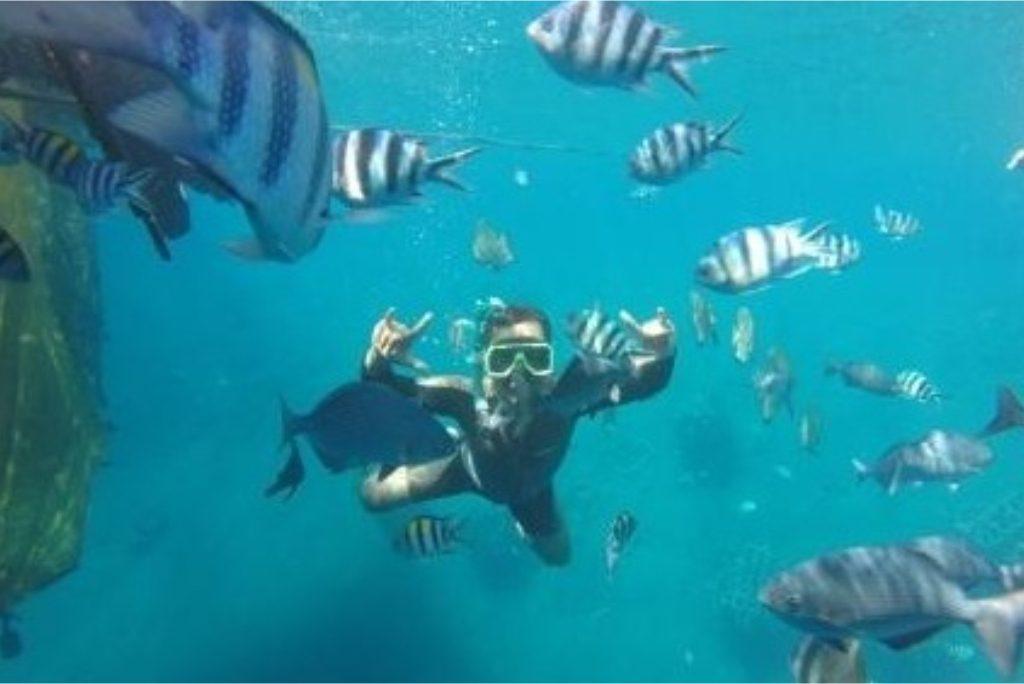 bangsring banyuwangi, bangsring snorkeling, paket wisata banyuwangi 1h1m