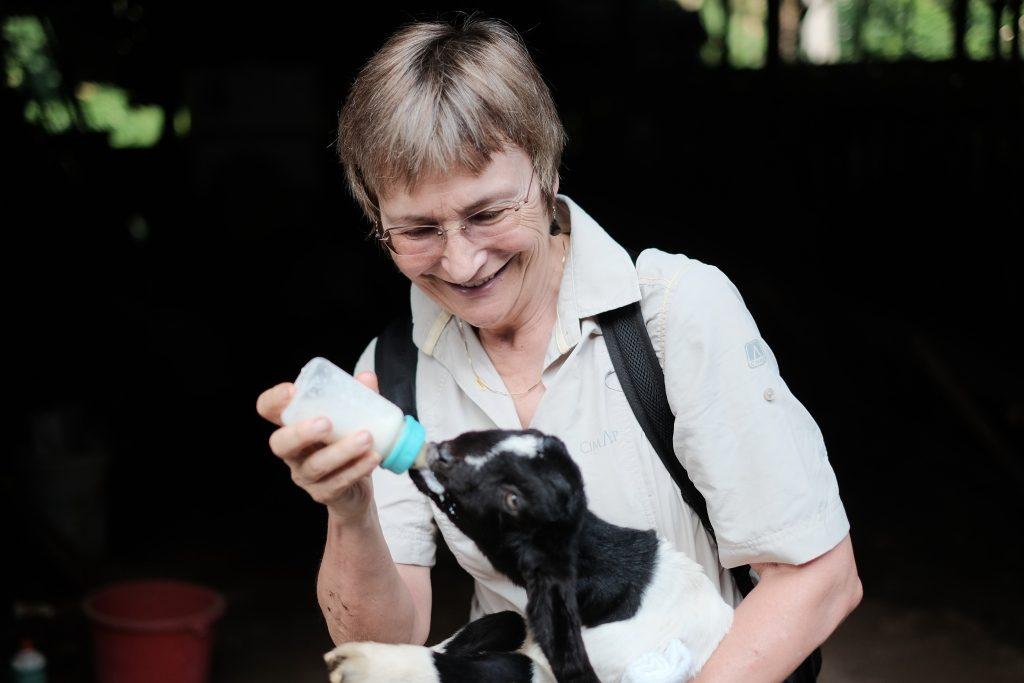 paket wisata banyuwangi 1 hari 1 malam, peternak kambing etawa jawa timur, wisata perah susu kambing etawa