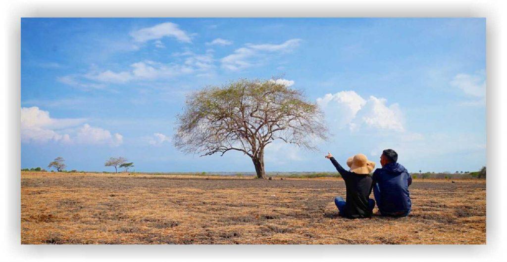 baluran, tour wisata baluran, baluran national park