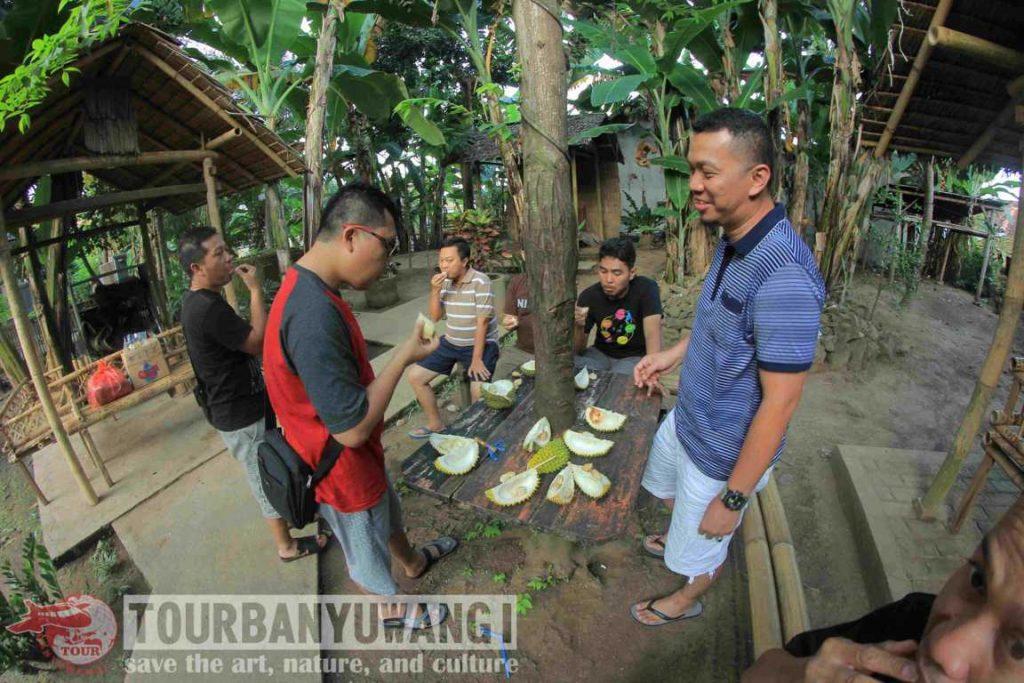 Kampung durian banyuwangi, desa balak songgon