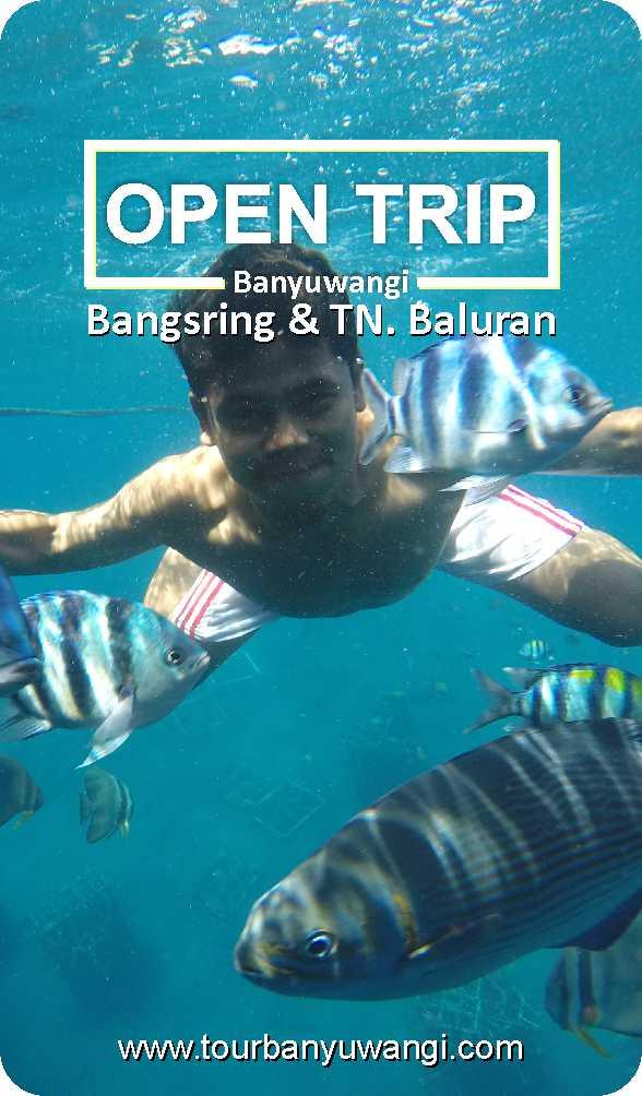 open trip bangsring baluran 2018, open trip banyuwang murah, snorkling rumah apung bangsring