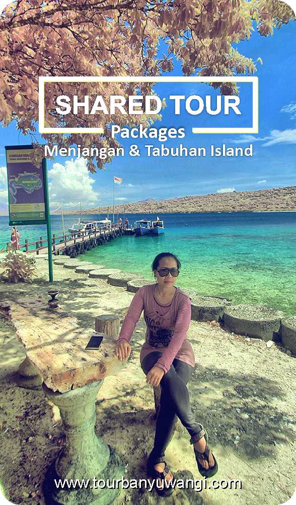 backpacking indonesia, shared tours to menjangan, menjangan island